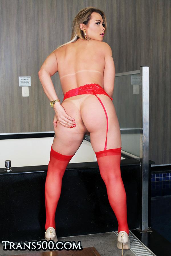 Round Tranny ass